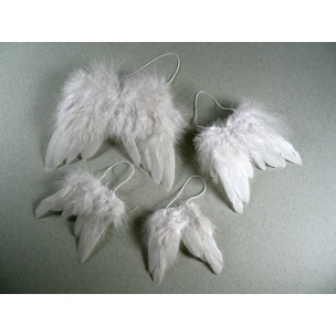MEYCO - Anjelské krídla 9